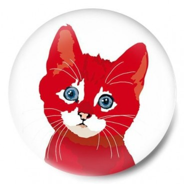 gato red