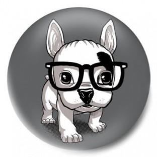 hipster bulldog