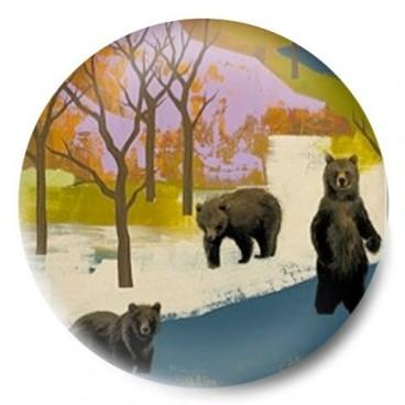 dibujo osos