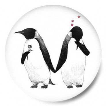 Pingüinos love penguin
