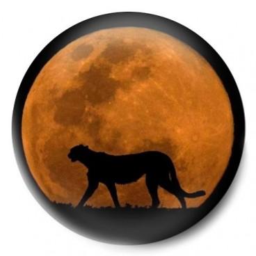 Luna guepardo