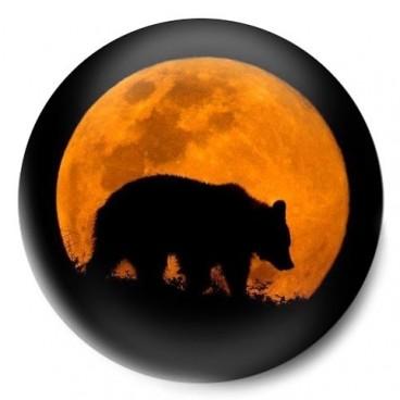 Luna oso