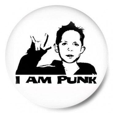 i am a punk